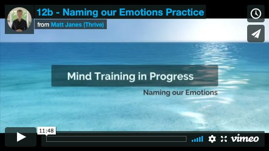Naming our Emotions Practice