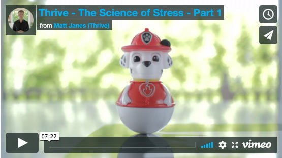 stress anxiety online course