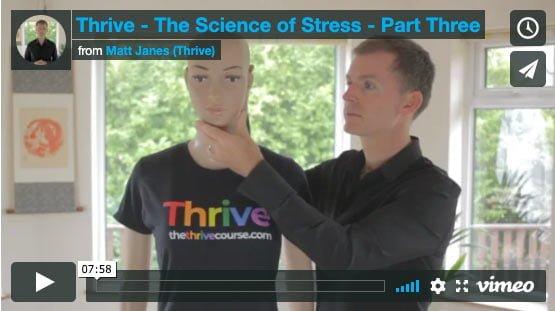 beat stress online course