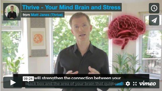 mind brain stress