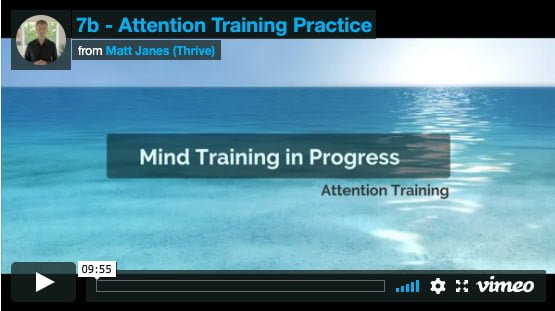 Attention Training Practice